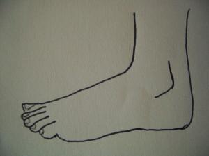 studio del piede