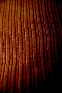 tessuto velluto a coste